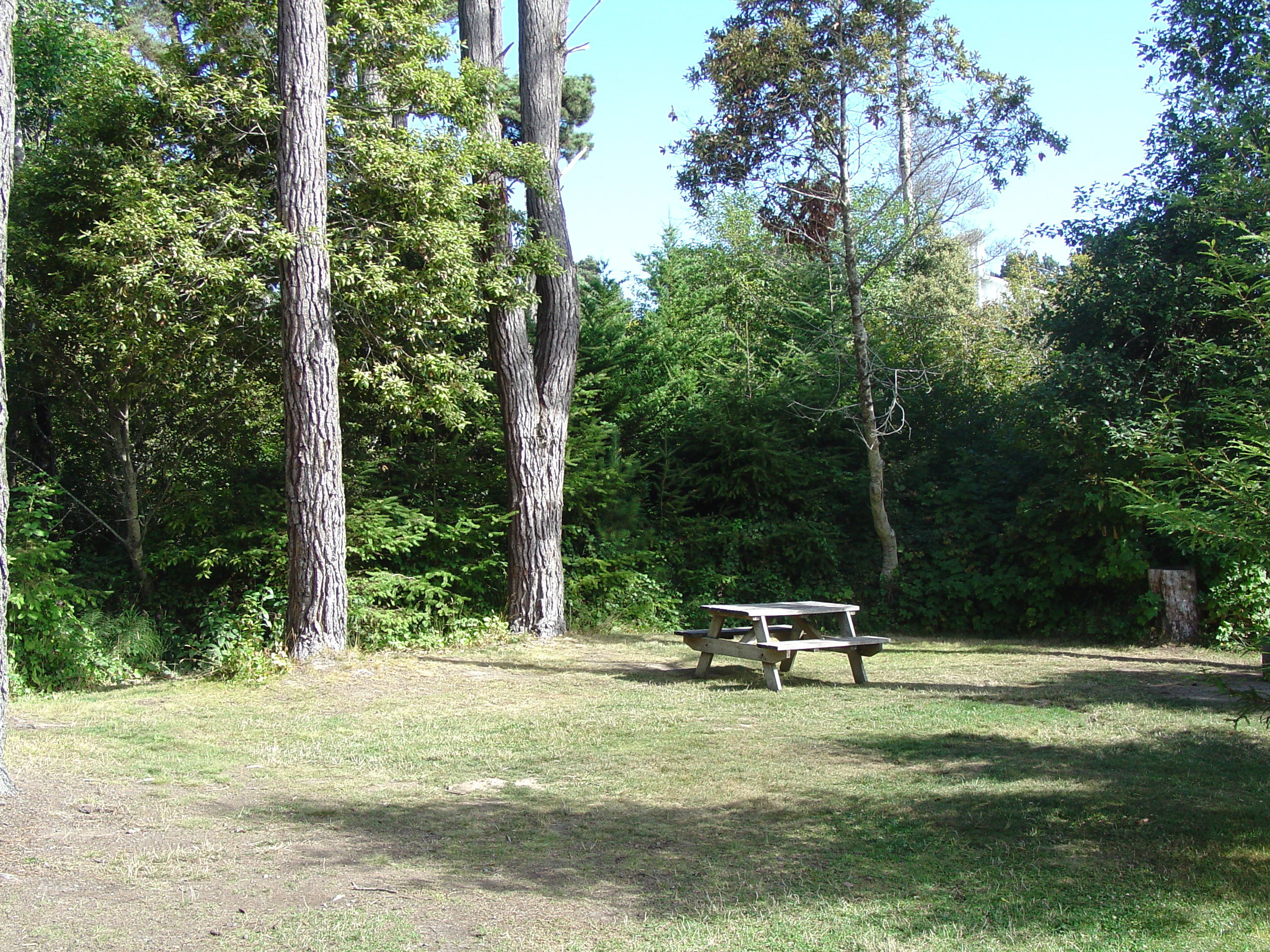 Pomo rv park and campground contacts for Camping grounds with cabins